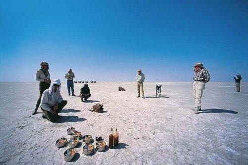 planet baobab zoutpan ntwetwe pan.jpg