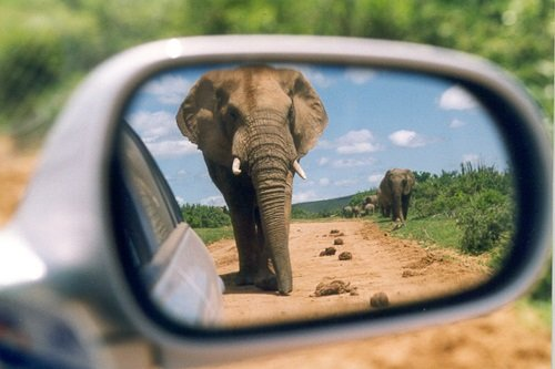afrika thema autorondreis.jpg