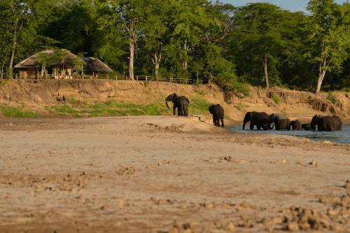 wildlife camp vanaf rivier.png