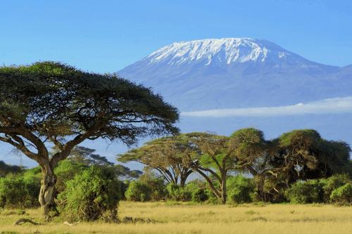 kilimanjaro 001.png