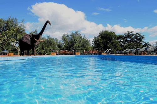 kudu lodge zwembad.png
