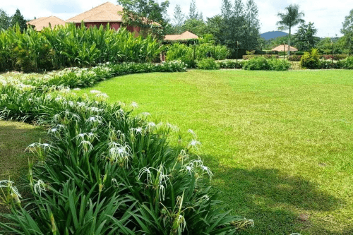 kabalega resort tuin.png