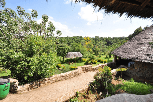 naiberi river camp uitzicht op tuin.png