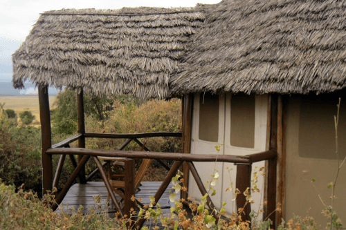 rift valley photographic lodge chalets.png