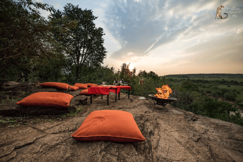 mara eden safari camp sundowner.png