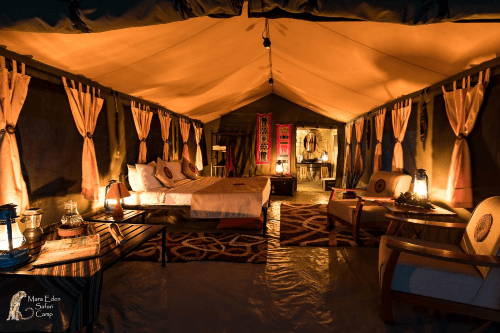 mara eden safari camp tent.png