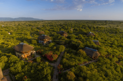 manyara wildlife safari camp buitenaf.png