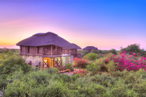 manyara wildlife safari camp chalets.png