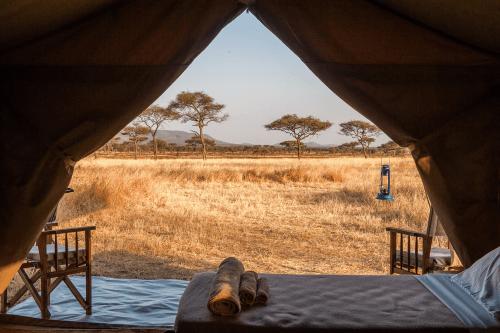 serengeti kati kati tented camp uitzicht vanuit tent.png