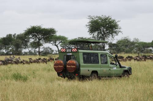 ranger safari voertuig 006.png