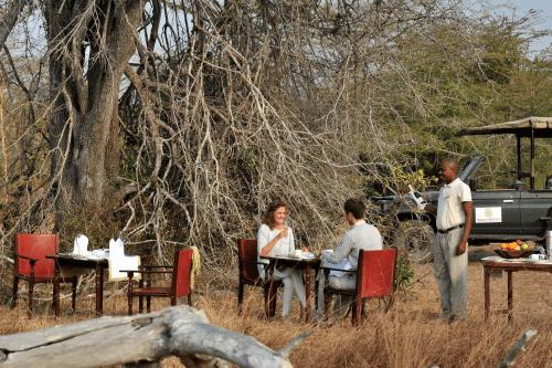 selous serena camp bush breakfast.png