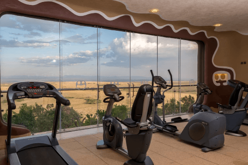 mara serena safari lodge gym.png