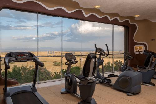mara serena safari lodge gym.png