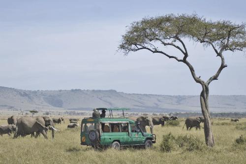 mara serena safari lodge gamedrive.png