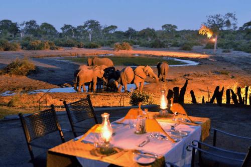 elephant valley lodge dineren uitzicht op waterdrinkplaats.png