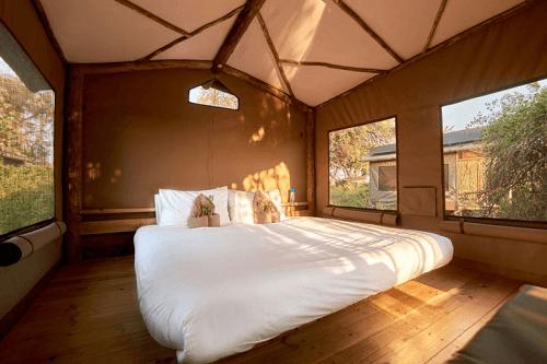 oddballs camp tent van binnen 1 dubbel bed.png
