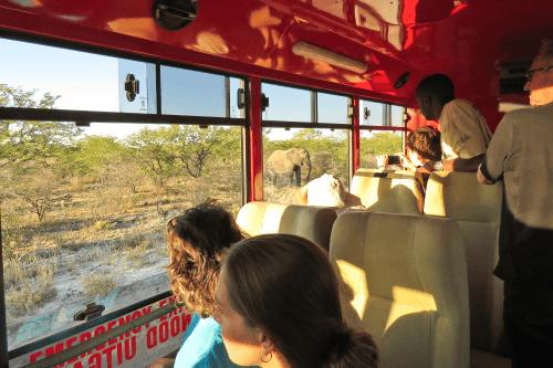 sunway safaritruck 001.png