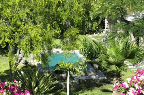 tarentaal guest farm tuin met zwembad.png