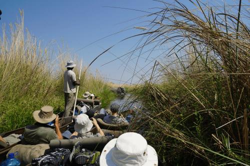 okavango delta sfeer 011.png