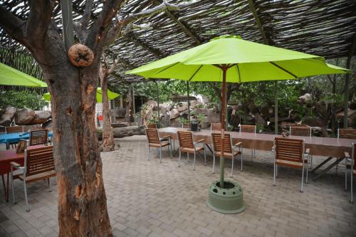 quiver tree forest rest camp buiten eten.png