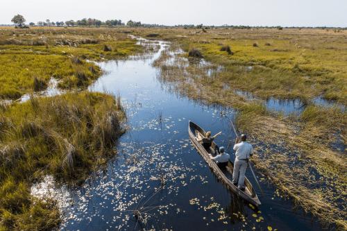okavango delta - mokoro activity-37.png