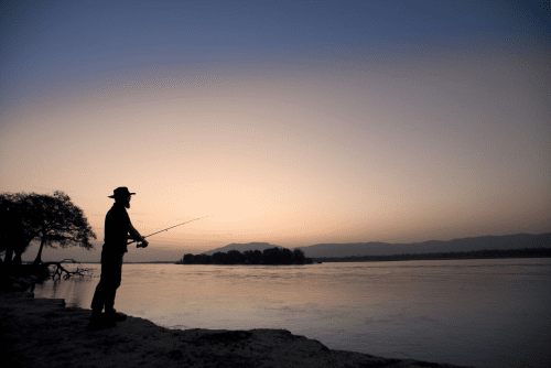 zambezi expeditions vissen.png