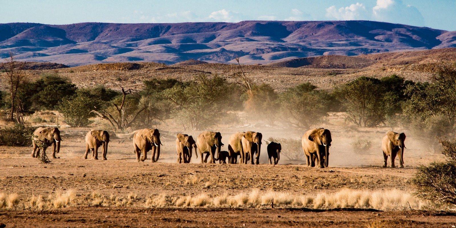 sfeerfoto groot homepage afrika 003.jpg