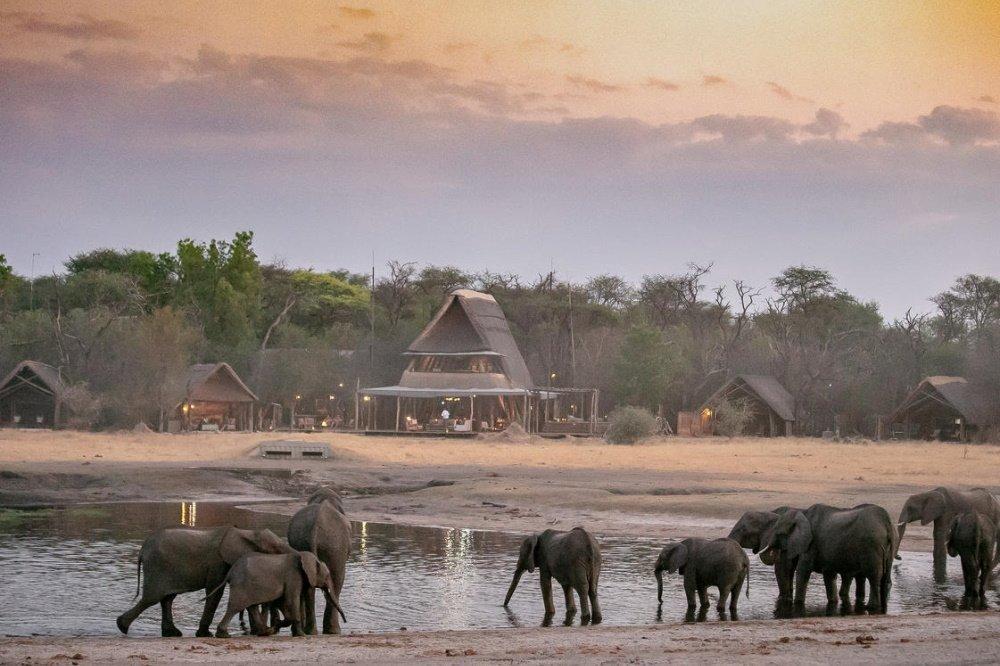 the hide olifanten voor de lodge.jpg