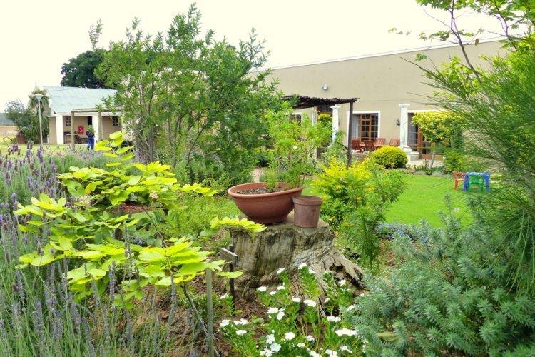 the kraal addo tuin.jpg