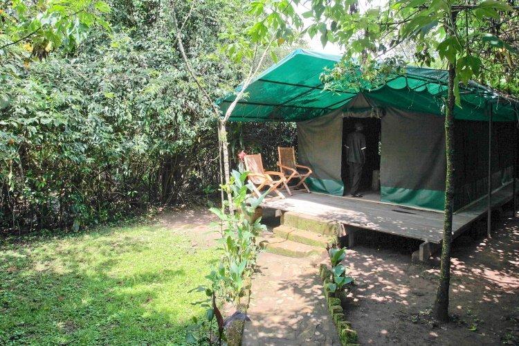 wagtail eco camp accommodatie.jpg