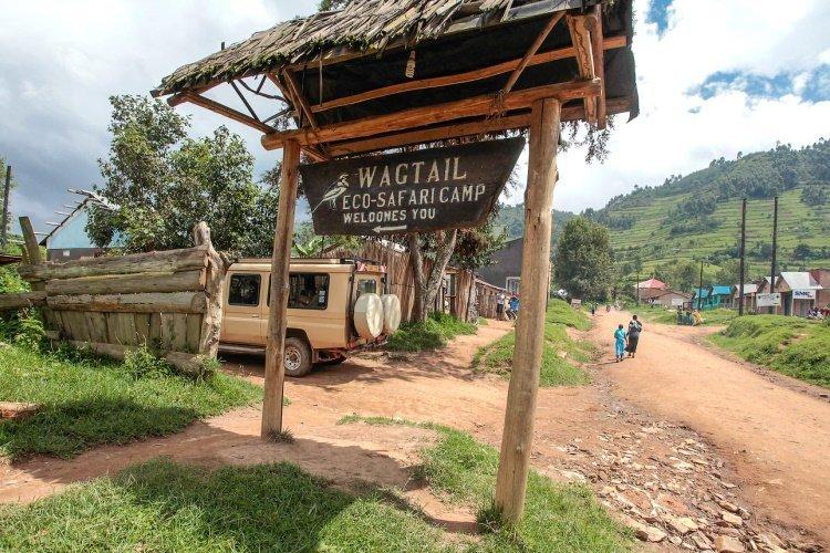 wagtail eco camp aankomst.jpg
