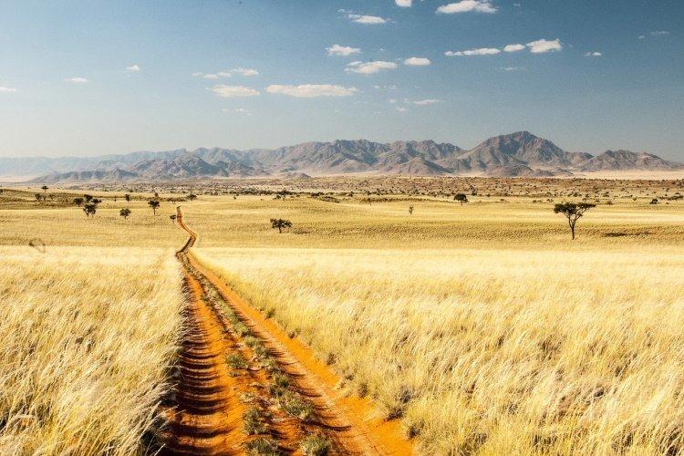 namib desert 002.jpg