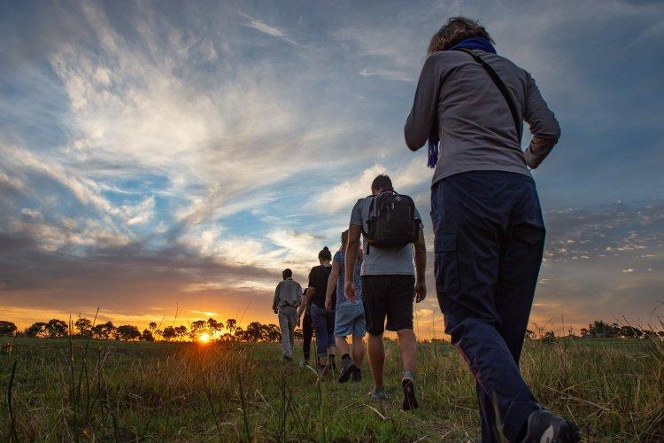 botswana okavango 015.jpg