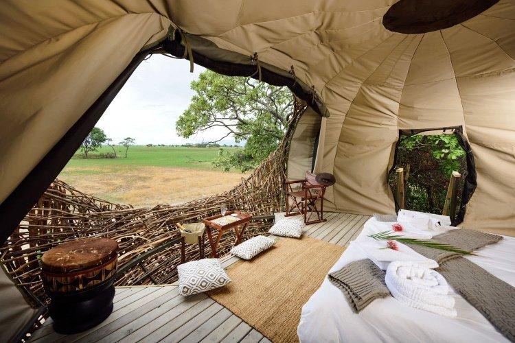 chisa busanga camp nest 003.jpg
