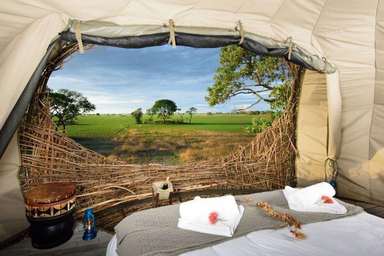 chisa busanga camp nest 002.jpg