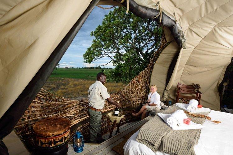 chisa busanga camp nest 001.jpg