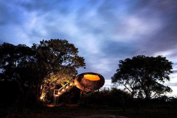 chisa busanga camp nest avond.jpg