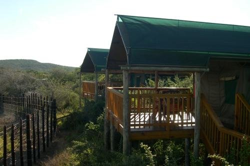 Addo Main Camp (1)