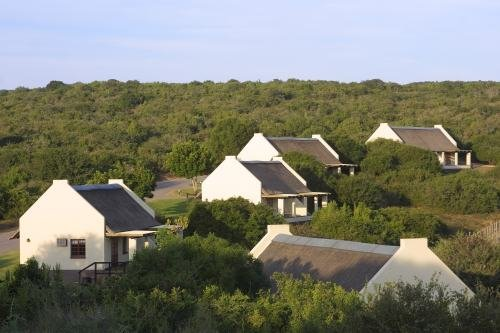 Addo Main Camp (2)
