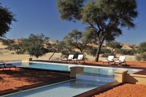 Intu Afrika Zebra Lodge 005
