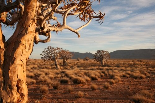 Rondreis Namibie - Het beste van Namibie dag 002