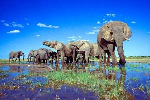Rondreis Namibie - Het beste van Namibie dag 014