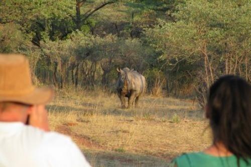 Rondreis Namibie - Het beste van Namibie dag 016