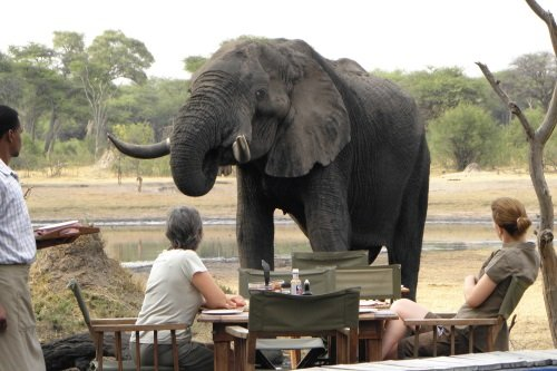 Hwange National Park a