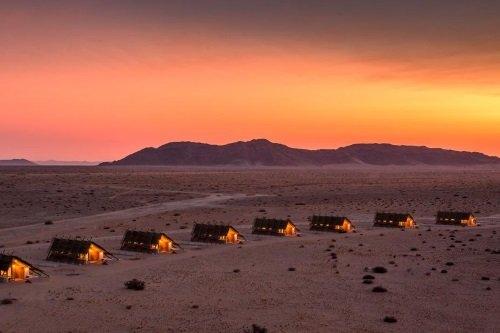 Desert Quiver Camp sfeer