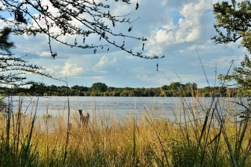 Thebe River Safaris chobe rivier
