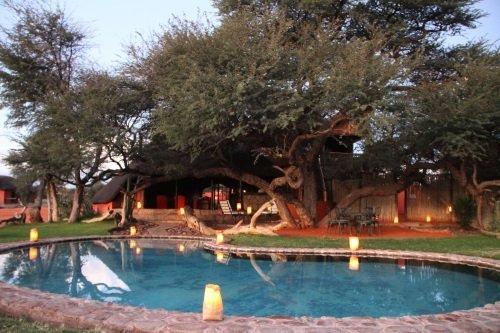 Camelthorn Kalahari Lodge zwembad