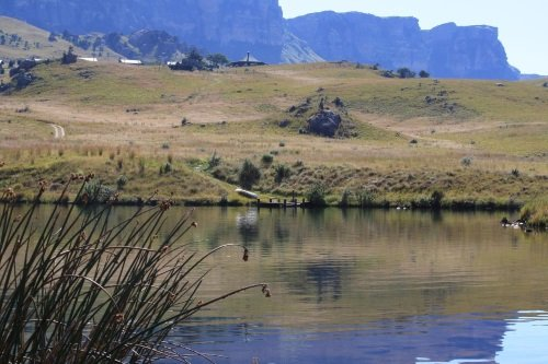 Greenfire Lodge Drakensberg omgeving