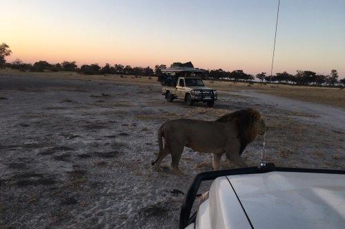 Drifters mobiele safaridagen Botswana 002