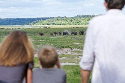 Chobe Game Lodge uitzicht olifanten